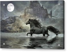 Friesian Fantasy Revisited Acrylic Print