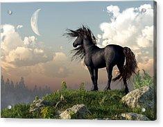 Friesian Moon Acrylic Print