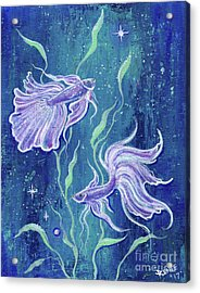 Frilly Betta Fish Acrylic Print by Renee Lavoie