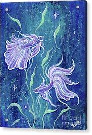 Frilly Betta Fish Acrylic Print