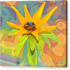 Frog A Lilly 2  - Photos Bydebbiemay Acrylic Print by Debbie May