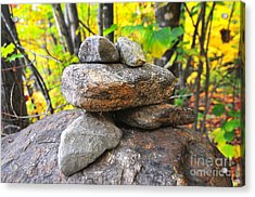 Frog Cairn Acrylic Print by Catherine Reusch Daley
