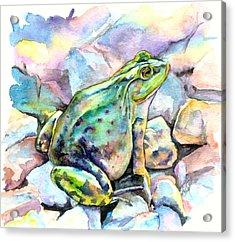 Frog Acrylic Print by Christy Freeman Stark
