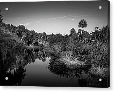 Frog Creek 2 Acrylic Print by Marvin Spates