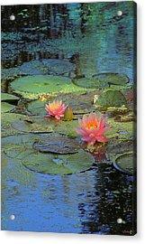 Frog Creek Acrylic Print