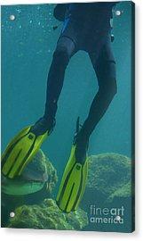 Frog Legs Acrylic Print