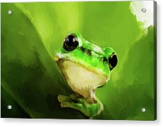 Frog Acrylic Print by Michael Greenaway