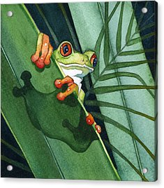 Frog Ready To Leap Acrylic Print by Lyse Anthony