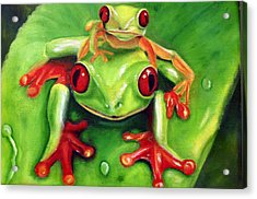 Frog Rodeo Acrylic Print by Darlene Green