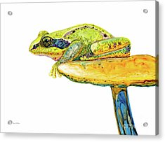 Frog Sitting On A Toad-stool Acrylic Print