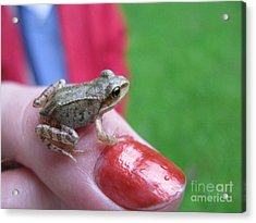 Acrylic Print featuring the photograph Frog The Prince by Ausra Huntington nee Paulauskaite