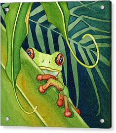 Frog The Timid One Acrylic Print