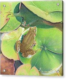 Froggie Acrylic Print by Elizabeth Dobbs