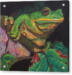 Acrylic Print featuring the painting Froggie by Karen Ilari
