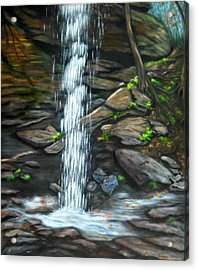 From Behind Moore Cove Falls Acrylic Print by Sandy Hemmer