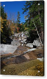 From Below Acrylic Print by Clay Peters