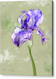 From Charlotte's Garden Acrylic Print