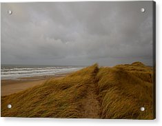 From Dunes To Sea Acrylic Print