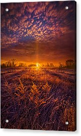 From Here I Walk Acrylic Print by Phil Koch