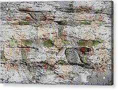 Stone Acrylic Print by Lorai Wilson