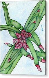 From My Garden 3 Acrylic Print