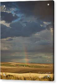 From The Darkness Comes Light Acrylic Print