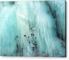 From The Ice... Acrylic Print