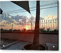From The Patio Acrylic Print by Staci Black