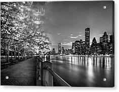 Front Row Roosevelt Island Acrylic Print by Az Jackson