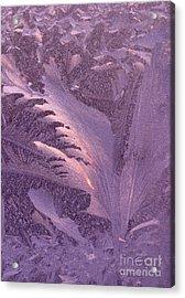 Frost Frosty Window Acrylic Print