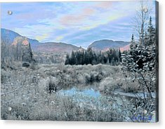 Frost On The Bogs Acrylic Print