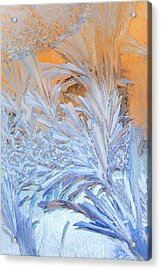 Frost Patterns On Window Acrylic Print