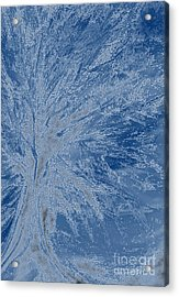 Frost Tree By Jrr Acrylic Print