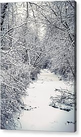 Acrylic Print featuring the photograph Frosted Feeder by Kendall McKernon