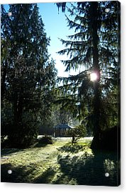 Frosted Gazebo Acrylic Print by Ken Day