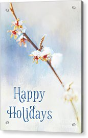 Frosted Witch Hazel Blossoms Holiday Card Acrylic Print