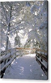 Frosty Boardwalk Acrylic Print