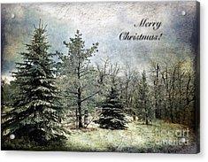 Frosty Christmas Card Acrylic Print by Lois Bryan