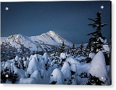 Frosty False Omalley C Acrylic Print