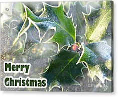 Acrylic Print featuring the photograph Frosty Holly by LemonArt Photography