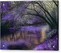Frosty Lilac Wilderness Acrylic Print by Michele Carter