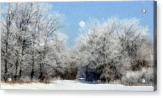 Acrylic Print featuring the photograph Frosty Moon Trail by John Hix