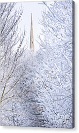 Frosty Morning Acrylic Print