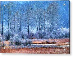 Acrylic Print featuring the digital art Frosty Morning At The Marsh Photo Art by Sharon Talson
