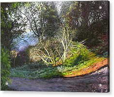 Frosty Morning Near Nant Clwyd Acrylic Print by Harry Robertson