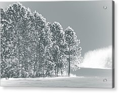 Acrylic Print featuring the photograph Frosty Morning by WB Johnston