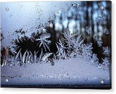Frosty Morning Window Acrylic Print by Liz Allyn