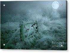 Frosty Night Acrylic Print