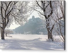 Acrylic Print featuring the photograph Frosty Sugarloaf Between Trees by Kari Yearous