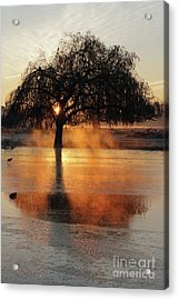 Frosty Sunrise In Bushy Park London 2 Acrylic Print